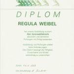 _Diplom0008